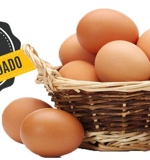 huevos camperos_6784 900×512