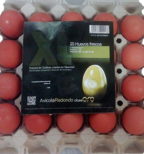 huevos 900×512